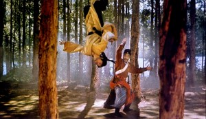The Martial Arts - A touch of Trampoline